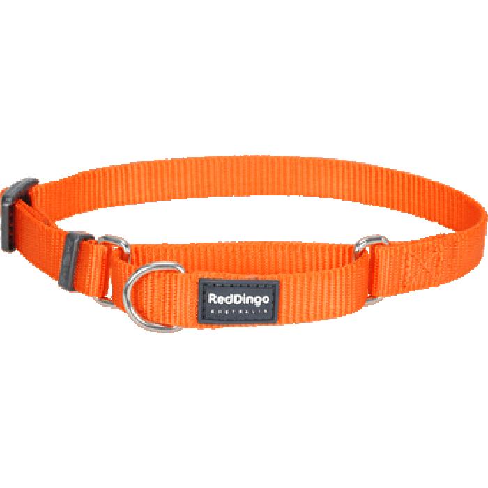 Koiran puolikiristävä panta Martingale, oranssi