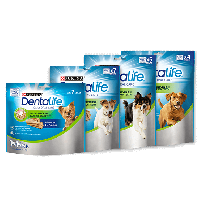 Purina Dentalife Big Pack (S54kpl / M42kpl / L36kpl)