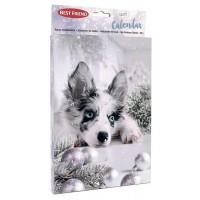 BF Tasty koiran joulukalenteri 120g