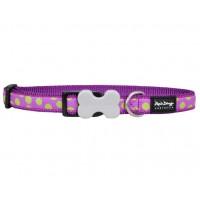 Koiran panta Design - Green Spots on Purple