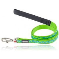 Koiran talutin Design - Stars Turquoise on Lime Green